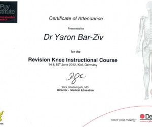 REVISION-KNEE instructional course